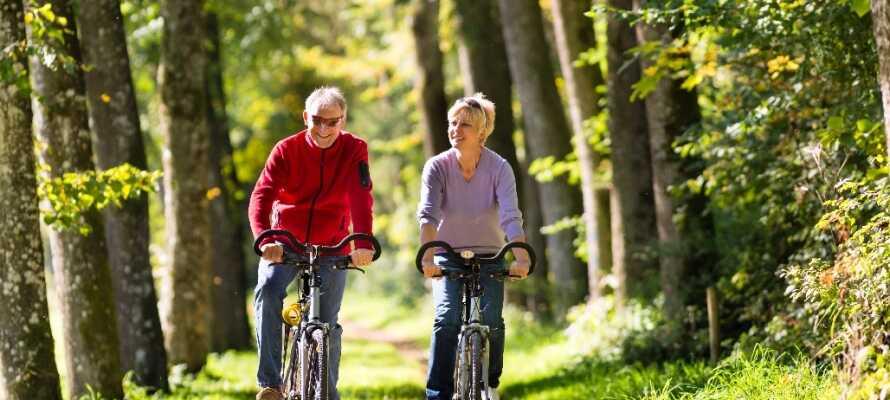 Ge er ut på upptäcktsfärd i naturen antingen till fots eller på cykel i Rebild Bakker eller Rold Skov.