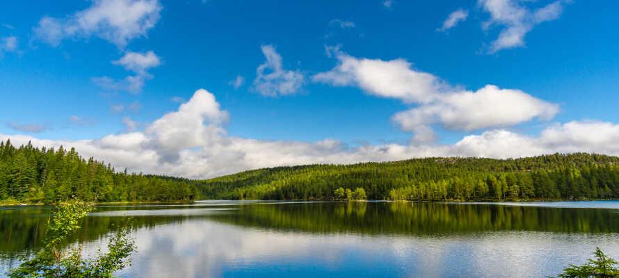 Dette traditionsrige højfjeldshotel ligger ved Steinsetfjorden i Valdres omringet af en dejlig natur.