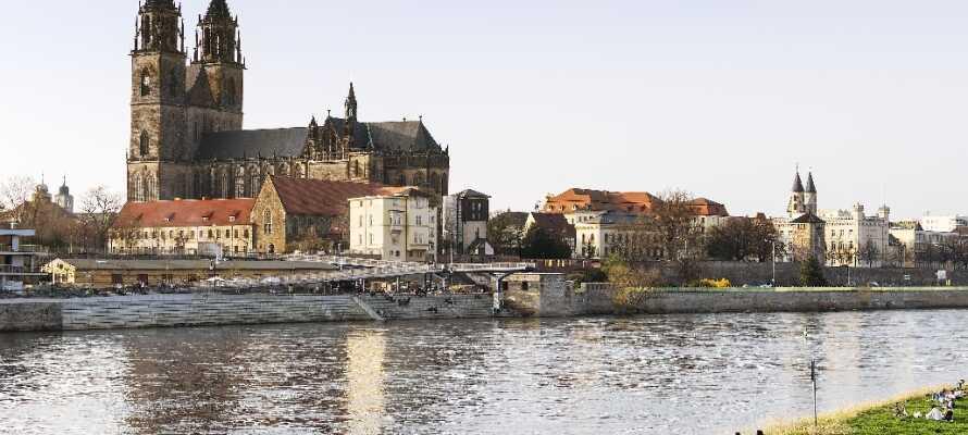 Passa på och ta en tur till regionens huvudstad Magdeburg och besök det vackra slottet i staden.