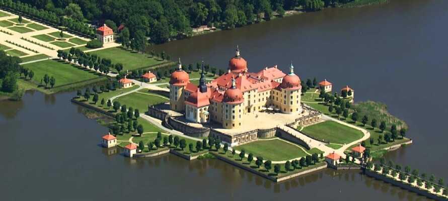 Besök den 1.000 år gamla staden Lepzig, upplev Moritzburg eller åk på utflykt med sightseeing till Dresden!