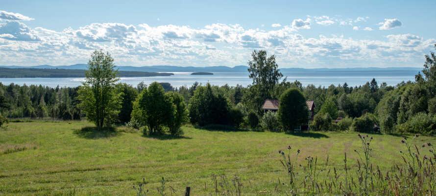 Med Siljan-sjøen rett utenfor døren, har dere et alletiders utgangspunkt for naturopplevelser med gåturer.