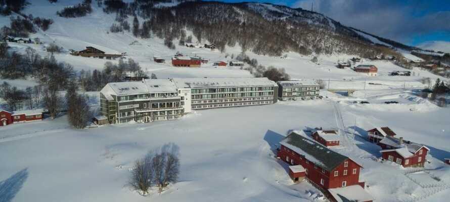 Ustedalen Hotell har en suveren beliggenhet i et vakkert fjell- og skiområde, litt utenfor Geilo sentrum.