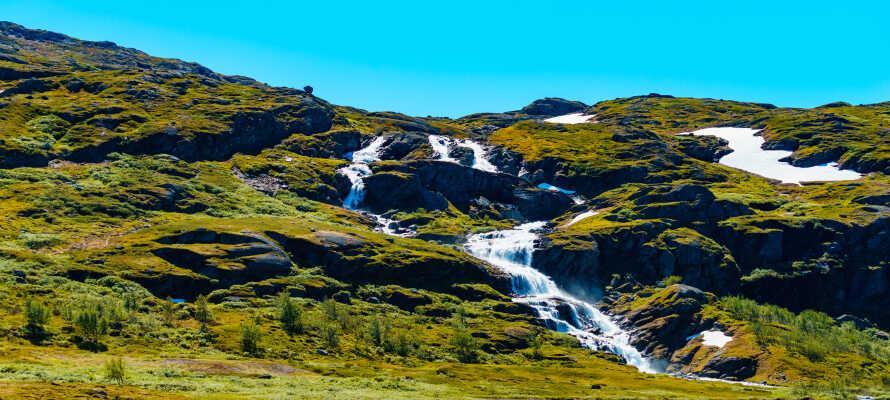 Fra de vakre stuene har dere en flott utsikt, og i sommerhalvåret er det opplagt å utforske Hallingskarvet nasjonalpark.