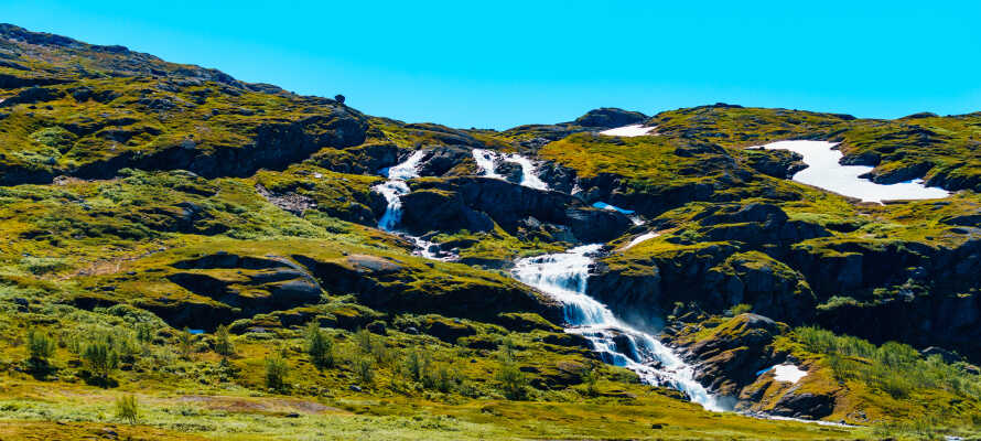 Fra de smukke stuer har I en herlig udsigt, og i sommerhalvåret er det oplagt at udforske Hallingskarvet Nationalpark.