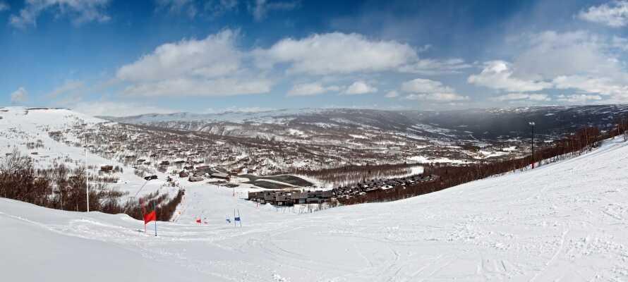 Om vinteren tilbyder hotellet gratis bustransport til skicentret i Geilo.