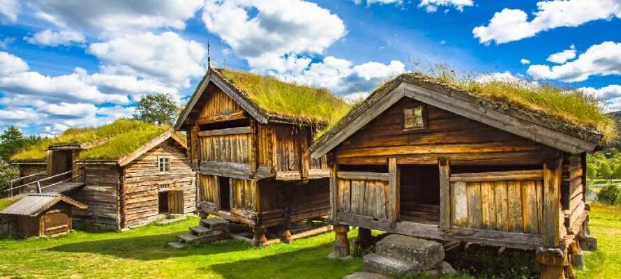 Få innblikk i områdets kulturhistorie med et besøk på et av friluftsmuseene i Hallingdal.