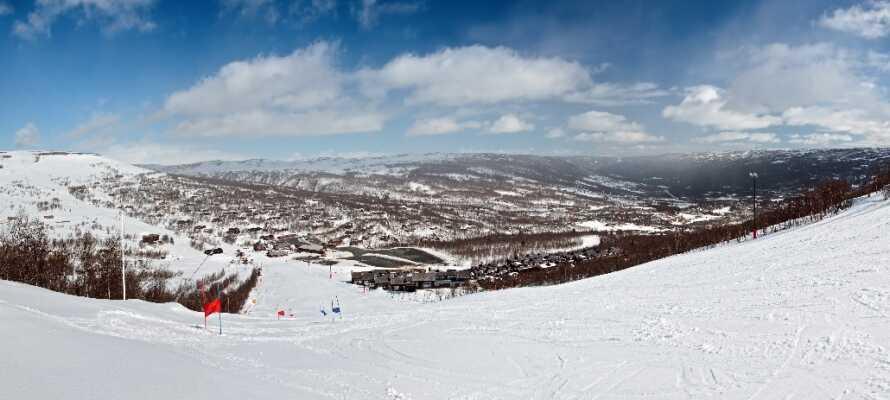 Der er gode muligheder for at stå på ski i Geilo og der tilbydes undervisning i Geilo Skiskolen på Slaata Skicenter.