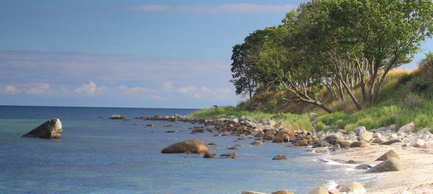 Femern er fuld af smuk natur og spændende muligheder og I har hele øen indenfor korte køreafstande
