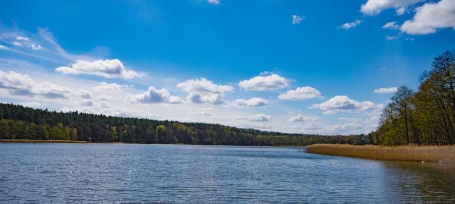 Nyt det beste av nordtysk natur, med kort avstand til 'Mecklenburgische Seenplatte' og Mecklenburgske Sveits.
