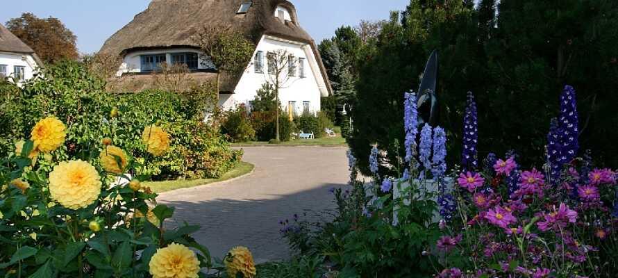 Dette 4-stjernershotellet ligger vakkert plassert midt i den skjønne naturen på Tysklands største øy, Rügen.