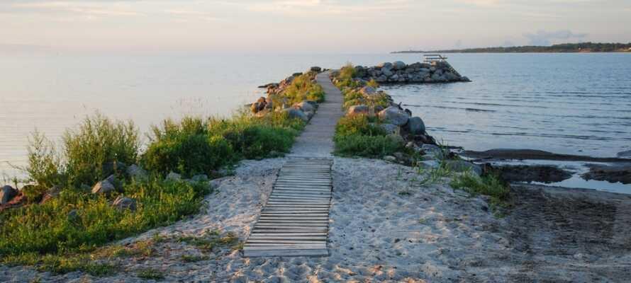 Upptäck Ölands vackra natur, här finns massor av vandrings- och cykelleder att välja mellan.