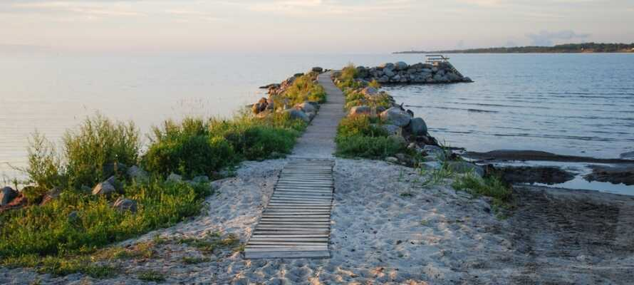 Opplev Ölands flotte natur, hvor det også finnes mange vandre- og sykkelstier å velge mellom.