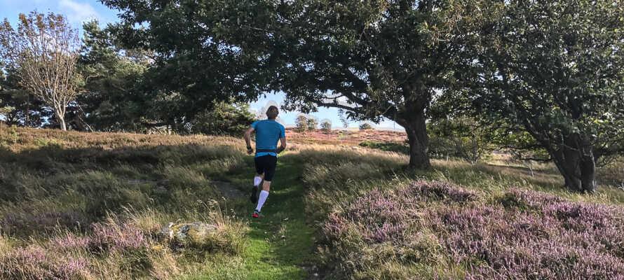 Det finns flera naturskyddsområden i närheten där ni kan promenera eller ta en joggingtur om ni är hurtiga