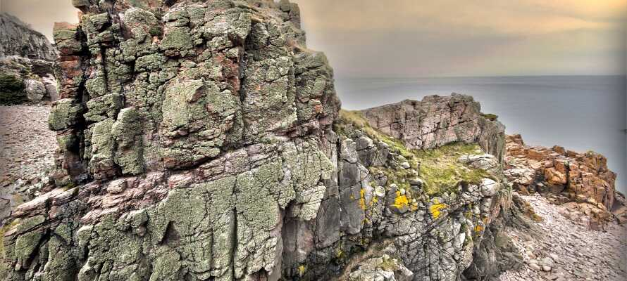 På Bjärehalvön övergår det kuperade jordbrukslandskapet till ett dramatiskt kustlandskap där klipporna möter havet.