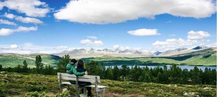 Det finnes mange turstier i området, slik at dere kan komme dere helt tett på den flotte naturen