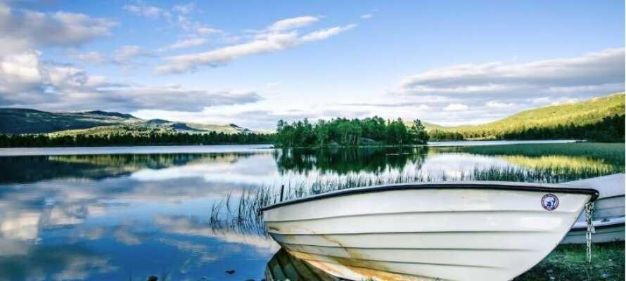 Om sommeren kan dere benytte dere av robåt, kano, og sykler.