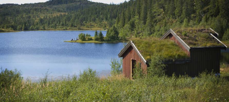 Det magiske Finnskogen byder på naturskønne områder og gode muligheder for en aktiv ferie med familien.
