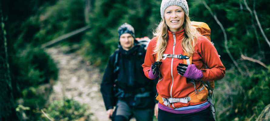 Tag med resesällskapet ut på upptäcksfärd ute i naturen och upplev bergen, dalarna och skogen.