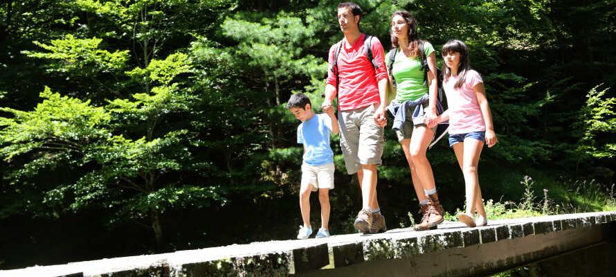 Für Familienurlaube bietet die Umgebung beste Bedingungen.