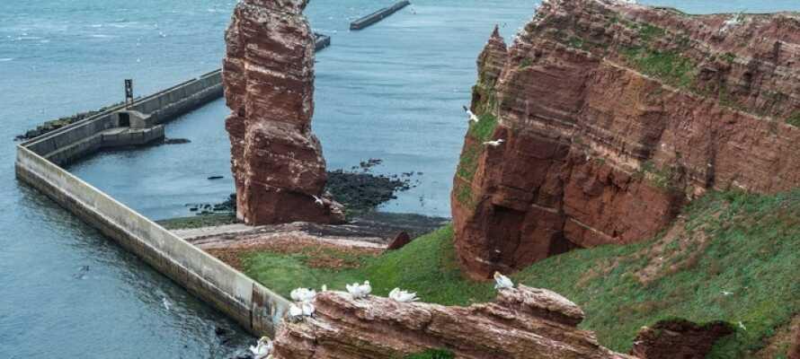 Den lille øyen Helgoland kan lett nåes med båt. Her finner dere klippene ved Lange Anna på øyens nordvestlige kyst.