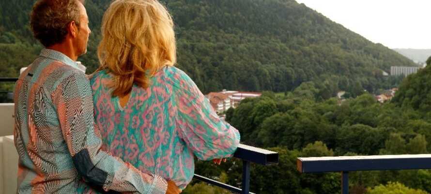 Alle lejligheder har adgang til balkon, så I kan sidde udenfor og nyde det gode vejr, med udsigt til Harzen.