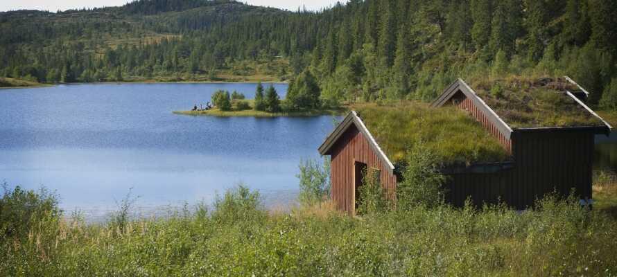 Närhet till den vackra norska naturen där landskapet präglas av skog, kullar, sjöar och vildmark.