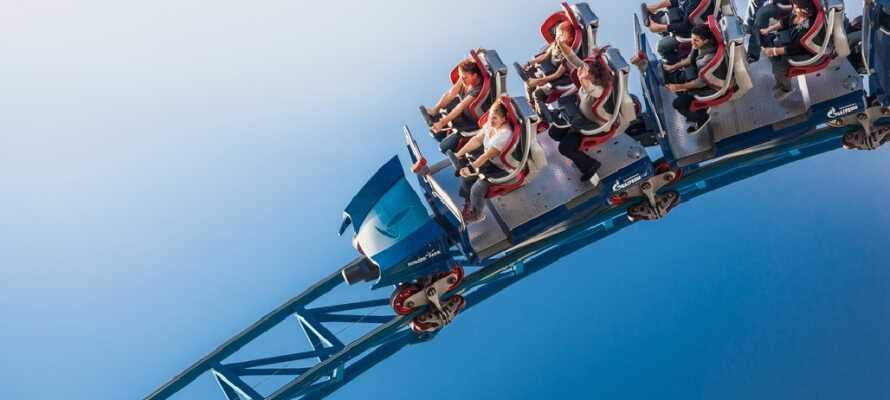 Har I børn med på ferie, er det et must at besøge en af Europas mest populære forlystelsesparker, Europa Park.