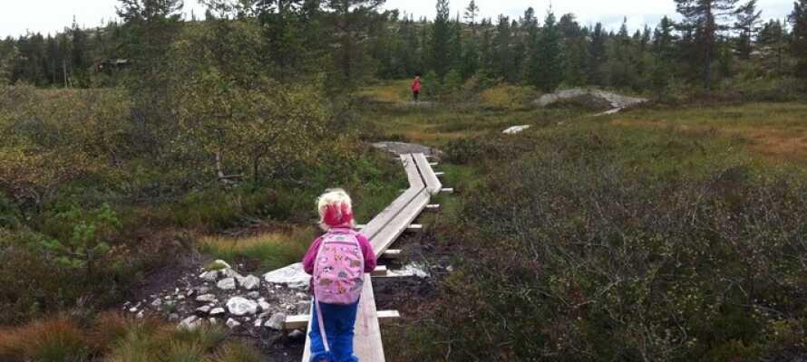 Die Region Blefjell mit Wandermöglichkeiten sowohl im Winter als auch im Sommer ist nicht weit entfernt