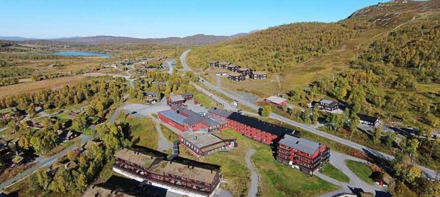Sie wohnen in einem traditionellen Berghotel im größten Wintersportort der Region Telemark mit Skipisten direkt vor der Haustür.