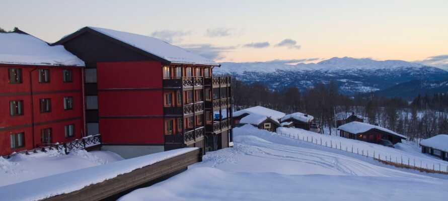 Bo på ett traditionellt fjällhotell i Telemarks största skidområde med goda möjligheter till utomhusaktiviteter.