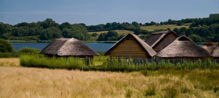 Vikingemuseet Hedeby ligger endast en halvtimmes bilfärd från hotellet och är en spännande historisk upplevelse.