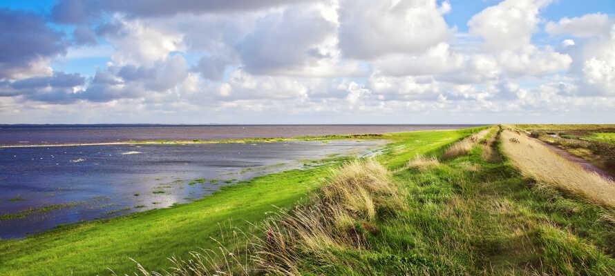 Wenn Sie einen Tagesausflug machen möchten, haben Sie die Möglichkeit, das atemberaubende Wattenmeergebiet zu erkunden.