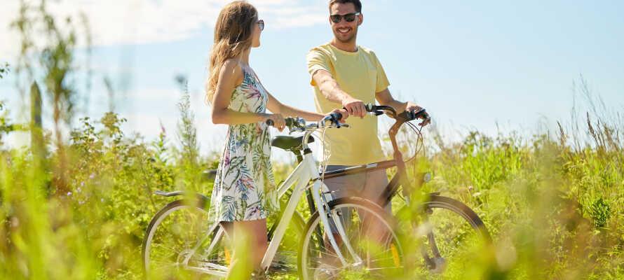 Udforsk den pragtfulde smålandske natur, som er helt ideel til lidt aktiv ferie med vandre- og cykelture i de grønne omgivelser.