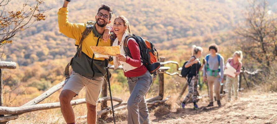 Ypperlige forhold for turer til fots eller sykkel - sommer som vinter.