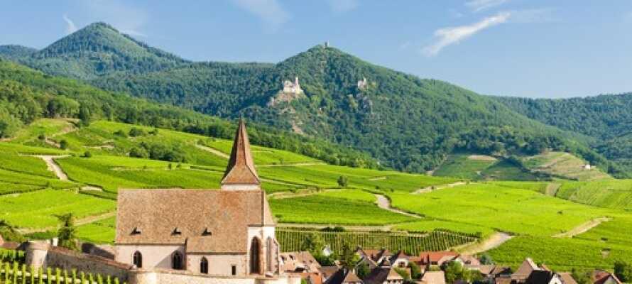 Hotellet ligger naturskönt mitt i en stor UNESCO-listad park i norra Alsace.