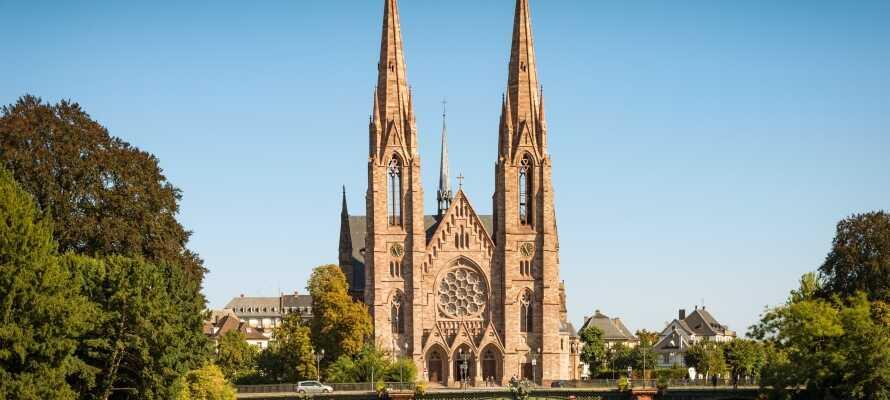 Ta bilen till Strasbourg och besök den imponerande katedralen.