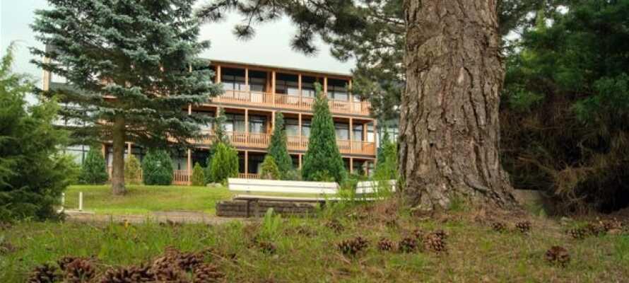 Nyt et avslappende opphold med alt inkludert. Her ligger forholdene til rette for deilig velvære, god mat og massevis av familie- og barnevennlige aktiviteter i Harz.