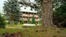 Hotellet ligger i byn Friedrichsbrunn.