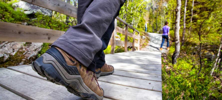 Skjønne turstier er med på å gjøre Eikerapen til et paradis for de som gjerne vil komme helt nær naturen.