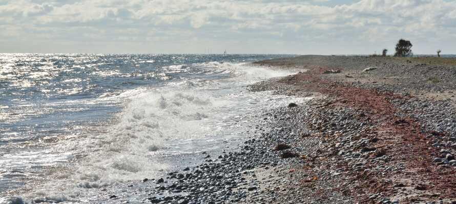 Erkunden Sie Langeland und genießen Sie einige schöne Tage mit frischer Meeresluft am Strand