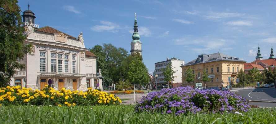 Statten Sie der Kärntner Hauptstadt Klagenfurt einen Besuch ab und erleben Sie Sport- und Kulturattraktionen sowie Einkaufsmöglichkeiten satt