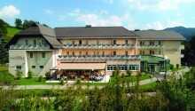Sonnenhotel Hafnersee ligger skønt i den sydøstrigske alpelandsby, Keutschach am See
