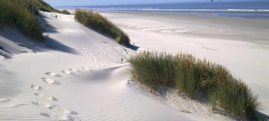 Hotellet ligger ca. en halv times kørsel fra stranden, hvor I kan nyde det gode vejr
