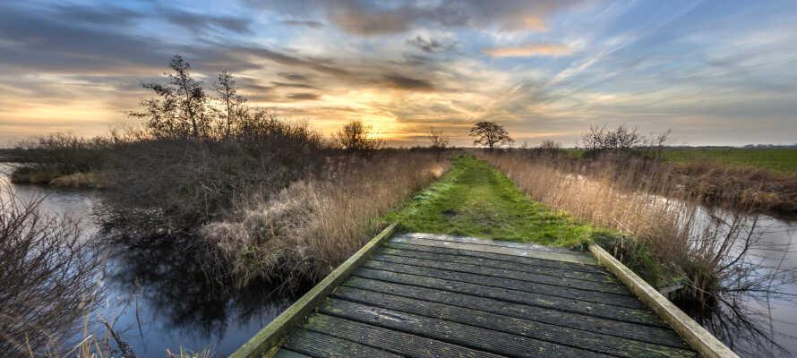 Det finns massor med möjligheter för både vandring och cykling i det vackra landskapet kring Heerenveen.