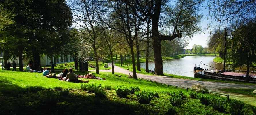 Njut av den fina naturen och de vackra kanalerna som slingrar sig igenom landskapet i Leeuwarden.