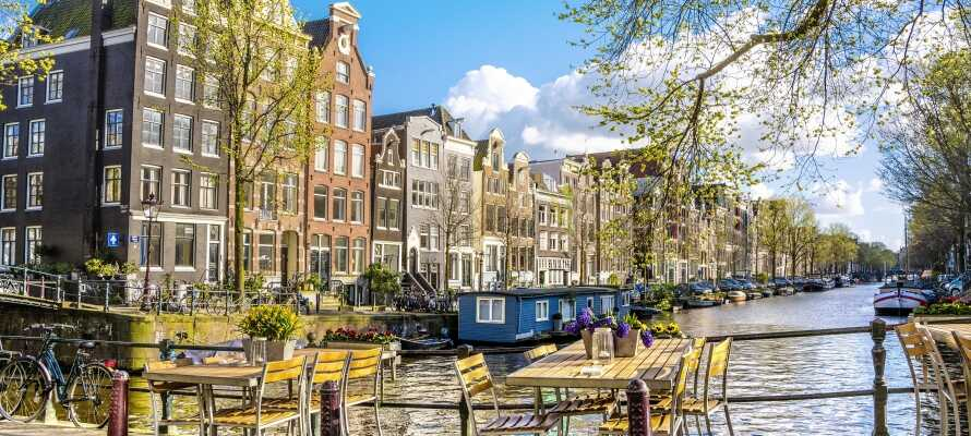 Machen Sie einen Ausflug nach Amsterdam, das mit dem Auto in einer halben Stunde zu erreichen ist