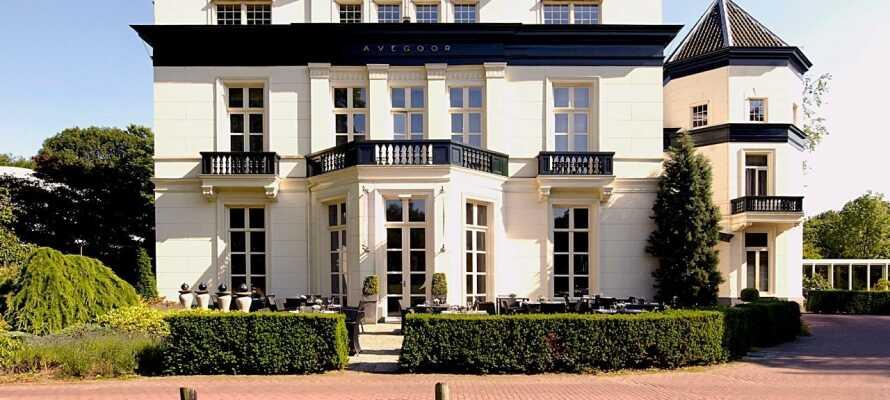 Kør en tur til slottet 'het Loo' i Apeldoorn lidt nord for Arnhem og gå en tur i de smukke haver