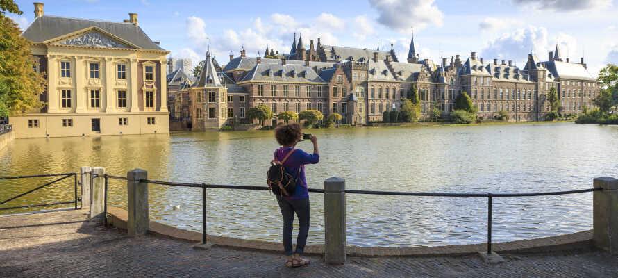 Haag kan bl.a. by på kultur, museer og et livlig natteliv.