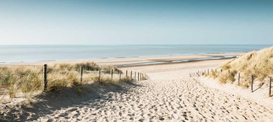 Ta en härlig promenad på ca 25 minuter till den fina sandstranden i Noordwijk.