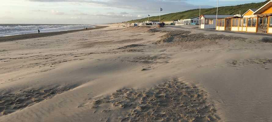 Här bor ni endast 50 meter från en stor sandstrand som till och med är en av de största i Holland.